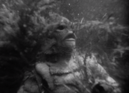 Creature from the Black Lagoon - Gill Man in the Weeds