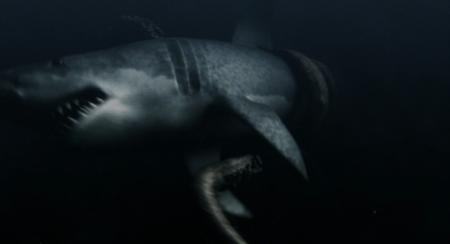 Mega Shark Vs Giant Octopus - Battle to the Death