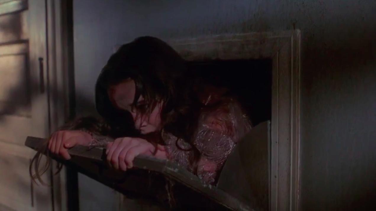 Halloween 5 The Revenge Of Mike Myers 1989 시난이팀의 블로그